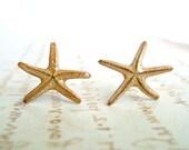 Real Starfish Stud Earrings, Starfish Earrings, Beach Earrings, Tiny Starfish, 1/2 to 3/4 inch:  The Dancing Sisters