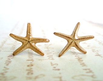 Real Starfish Stud Earrings, Sterling Silver Studs, Starfish Earrings, Beach Earrings, Tiny Starfish, 3/4 inch, 1.9 cm:  The Dancing Sisters