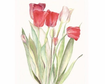 """Red Tulips and White, 8"""" x 10"""" print of original watercolor"""