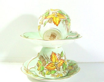 Vintage Rosina Bone China Made In England Tea Cups