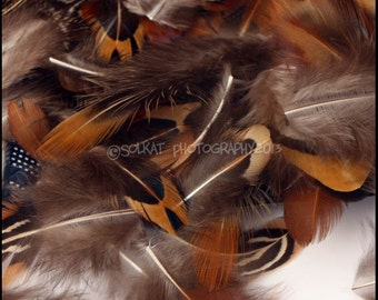 Natural Craft Supplies Short Brown Feathers Millinery Supplies Craft Feathers Real Pheasant Feather Earring Supply Small Patterned QTY60
