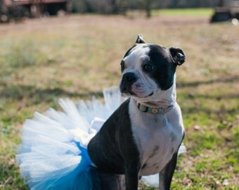 Super Fluffy Custom Dog tutu choose your colors SEWN XXS to XXXL