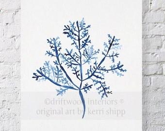 Sea Fern III in Denim Blue Watercolor Print 11x14 - Blue Coral Art - Coral Art Print - Beach Home Decor - Denim Blue Coral Art Print