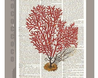 Red CORAL2 -ARTWORK  printed on Repurposed Vintage Dictionary page 8 x 10 -Upcycled Book Print