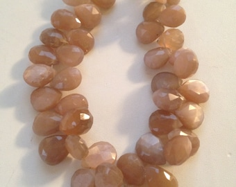 Moonstone Faceted Briolettes- 10x9mm