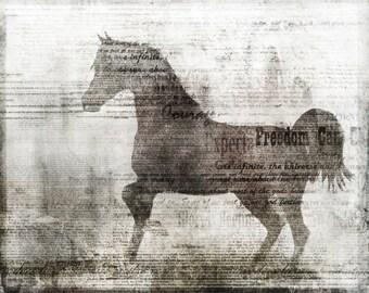 Freedom: Giclee Fine Art Print 13X19