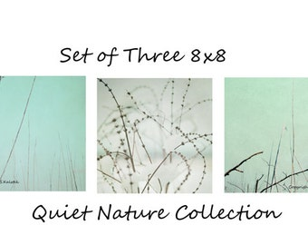 Nature Photography Set - Three 8x8 Photographs Mint Ivory Brown Beige Photography Abstract Nature Wall Decor Set Quiet Calming Pale Hues
