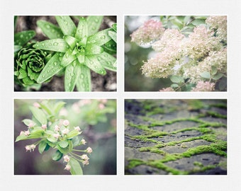 Spring Nature Print or Canvas Wrap, Green and Pink Nature Prints Set of 4, Floral, Moss, Raindrops, Woodland, Nature Prints Set, Pastel.
