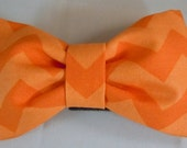 Dog Flower or Dog Bow Tie or Cat Flower or Cat Bow Tie  - Orange Chevron - Free Shipping