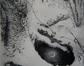 Winter moon, etching by Flora McLachlan, snow, pool, tree, frost, night, water, stream, forest, reflections, shining