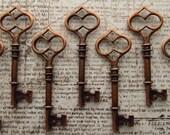 Terena Antique Copper Skeleton Key - Set of 10