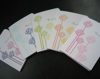 Thank You Cards Set of 5, Allium Flowers