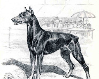 Doberman Pinscher Print, Vintage Dog Illustration, Edwin Megargee Artwork, 1950s Dog Art Sketch, Black and White, Wall Decor