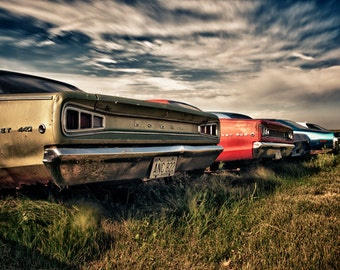 Fine art print of vintage Dodge muscle cars rusting away in a farmers field