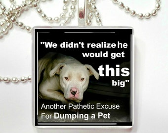 Another Pathetic Excuse for Dumping a Pet Glass Tile Pendant