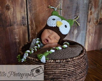 Lil' Owl Hat Photography Prop in Green and Brown