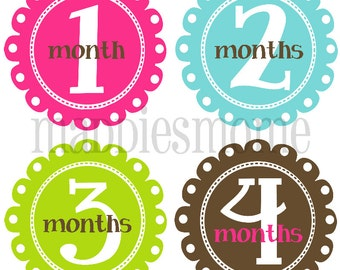 Monthly Baby Girl Stickers Baby Month Stickers, Monthly Bodysuit Sticker, Monthly Stickers (Leighann)