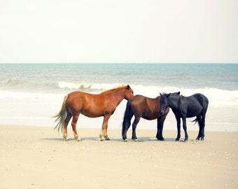 Horse Art Decor Photography | Wild Horses Outer Banks Beach | Equine Photography | Coastal Decor Beach House Art | Equine Art Prints | Peace