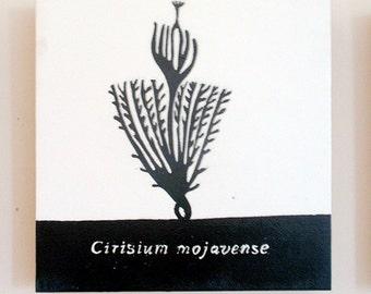 Cirsium mojavense, Mojave Thistle, Relief Print on Wood Panel, encaustic, botanical, hand pulled print, original art