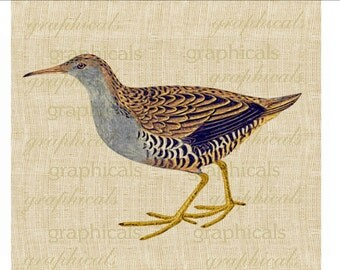 Blue gold Wading bird Instant Digital download image for iron on fabric transfer burlap decoupage pillows cards tote bags No. 1820