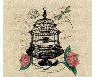 Paris Birdcage Hydrangea Hortensia Dragonfly Instant Digital download image for iron on fabric transfer burlap decoupage pillow card No 1827