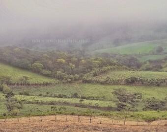 Cloud Forest, Jungle Photo, Grasslands Photo, Green Decor, Forest Photo, Costa Rica Art, Jungle Wall Art, Foggy Mountains, Costa Rica Photo
