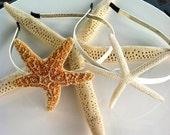 Destination wedding Sugar starfish head bands Nautical weddings