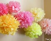 10 Pink Lemonade Birthday Party Decorations Tissue Pom Poms