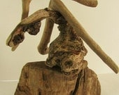Driftwood Tree - Aquascaping - From Hawaii  Island