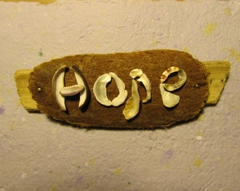 Hope - Shells  - Driftwood from Hawaii