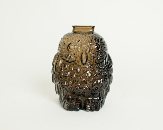 Classic breakable wise old owl coin bank by inbetweenbranches - Wise old owl glass bank ...
