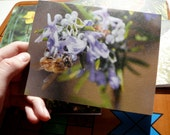 Photo Note Cards, Recycled Blank Spring of Vancouver Island: Support Lyme Disease Foundation