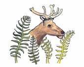 Fern Elk Art Original Drawing with Watercolor