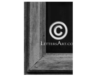 Printable Letter Art ONLY 1.99 - 4x6 individual photo download - printable  - digital image - alphabet, nature, architectural. Letter L - L7