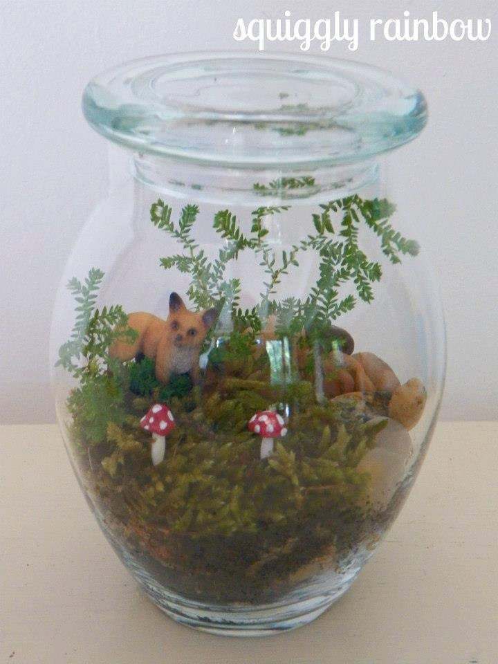 terrarium animal fox mushroom quirky australian squiggly rainbow etsy mini garden
