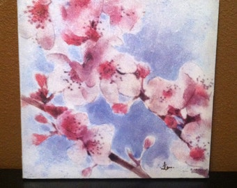 Japanese Cherry Blossom print on a 10x10 stretched canvas