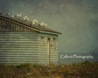 Rustic Old Building -  digital photography