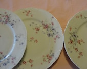 French Limoges Plates Set of 4
