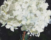 still Life Painting, Hydrangea Flower, Original Oil on Canvas Panel board, 8x8 inch fine art