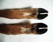Real Deer Legs foot feet hoof hooves leg animal part straight position, single or matching pairs