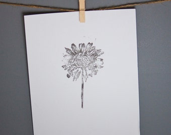 black and white botanical print for your home office bedroom library real pressed flower design daisy