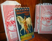 CIRCUS CARNIVAL BIRTHDAY Party Favor: 50 page Handmade Notebook Packaged in a Peanut Bag