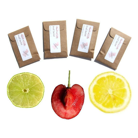 Scented Sachets Kids Birthday Party Seed Packet Favors Kraft DIY Treat Bag Idea Fruit Stripes Home Fragrance Childs Room Decor Custom Color