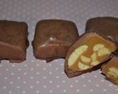Milk Chocolate Covered Peanut Caramels - 1/2 Pound Listing