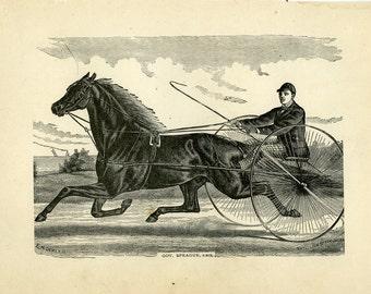 Antique wood engraving horse sulky and rider gov.sprague ca.1870