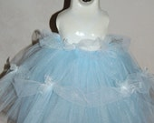 My First Cinderella Inspired Tutu