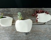 Trio Faceted White Wall-hanging Planter