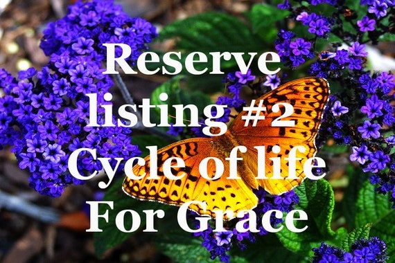 reserve listing for Grace 2