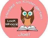 "Owl Graduation Stickers - Sheet of 20 - 2"" round"