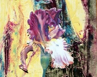 "Archival Print of Original Mixed Media ""Purple Iris on Lemon"""